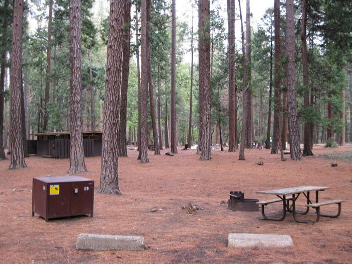 CampsiteCampsite 59