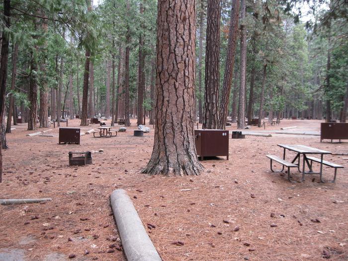 CampsiteCampsite 60