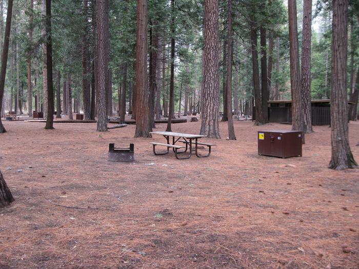 CampsiteCampsite 61