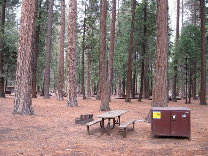 CampsiteCampsite 62