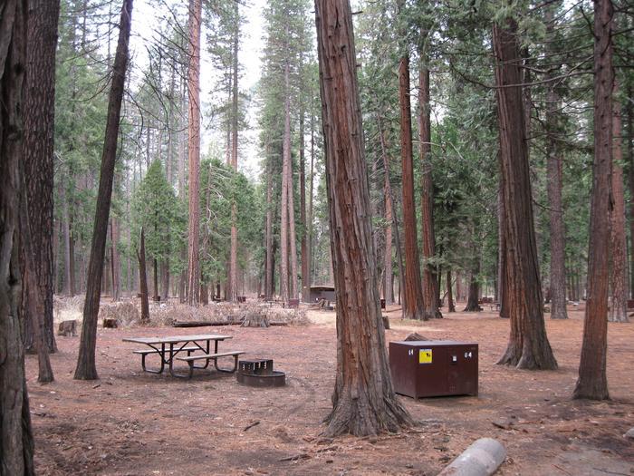 CampsiteCampsite 64