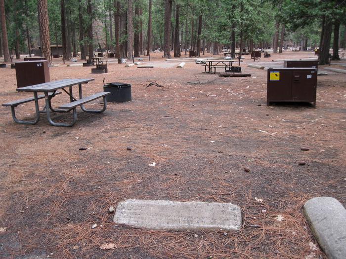 CampsiteCampsite 66