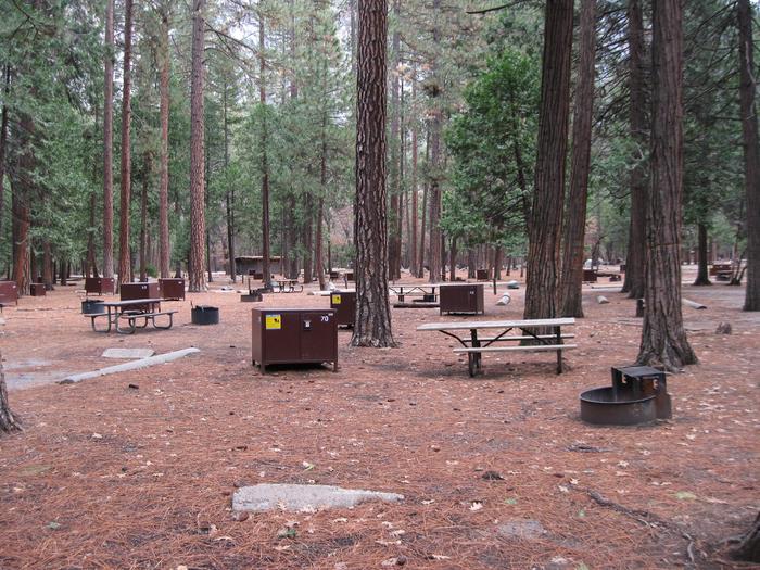 CampsiteCampsite 70