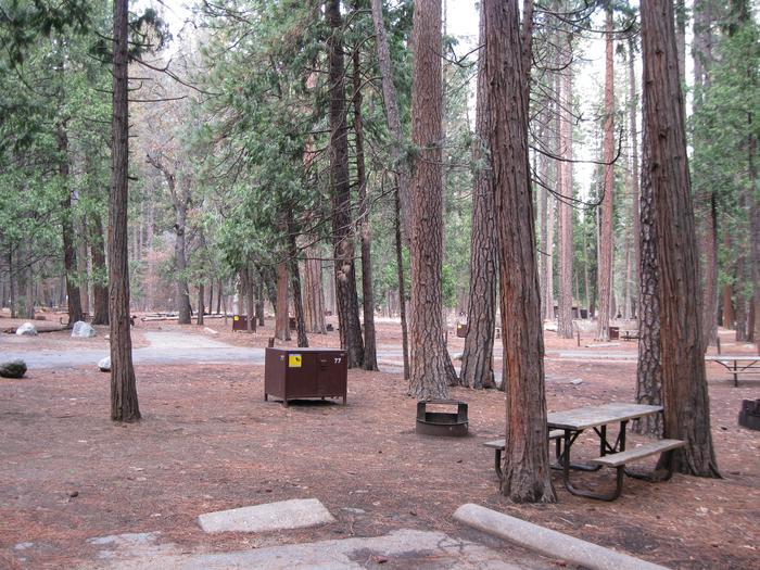 CampsiteCampsite 77
