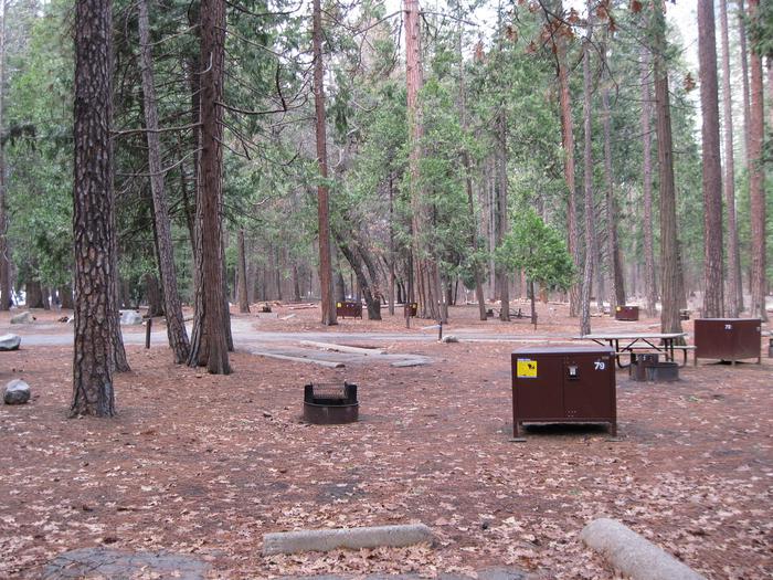CampsiteCampsite 79