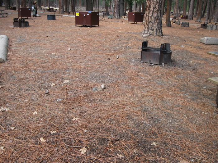CampsiteCampsite 84