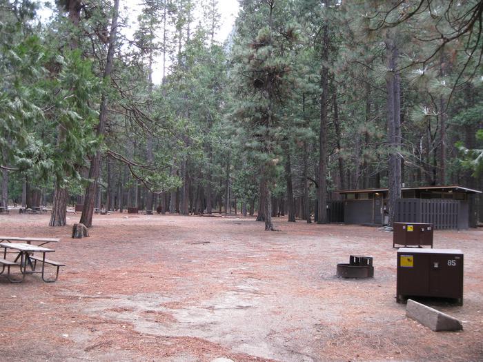 CampsiteCampsite 85