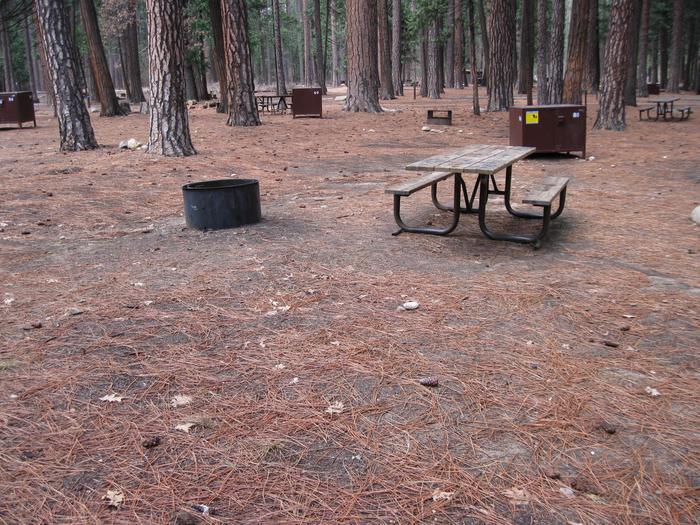 CampsiteCampsite 88