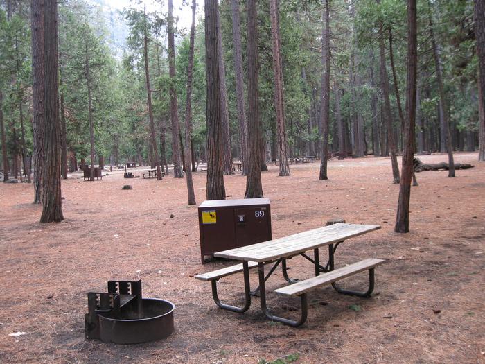 CampsiteCampsite 89
