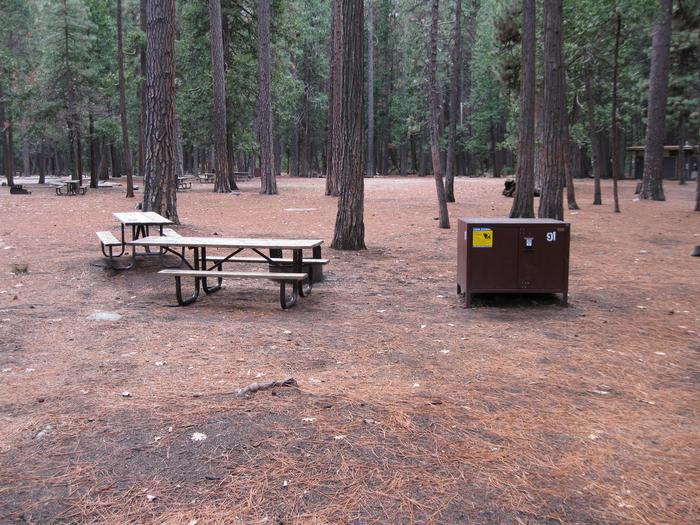 CampsiteCampsite 91