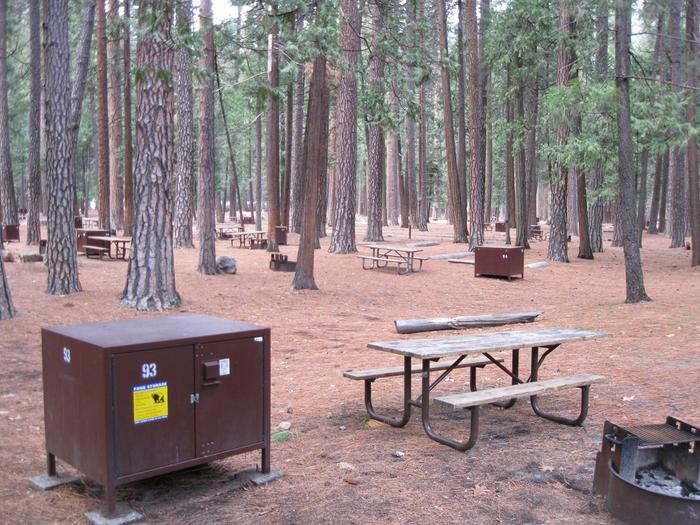 CampsiteCampsite 93