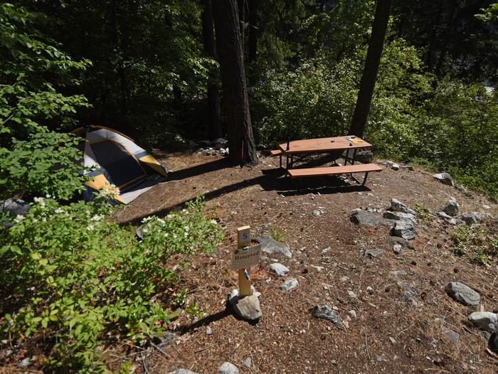 A sunny campsite surround by forest and with a picnic tablePurple Point Site 5