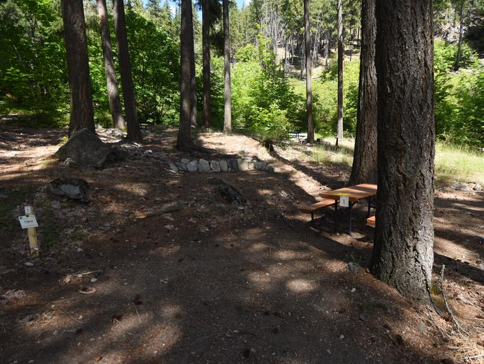 A campsite interspersed with ponderosa pine trees and with picnic tableLakeview Site 1