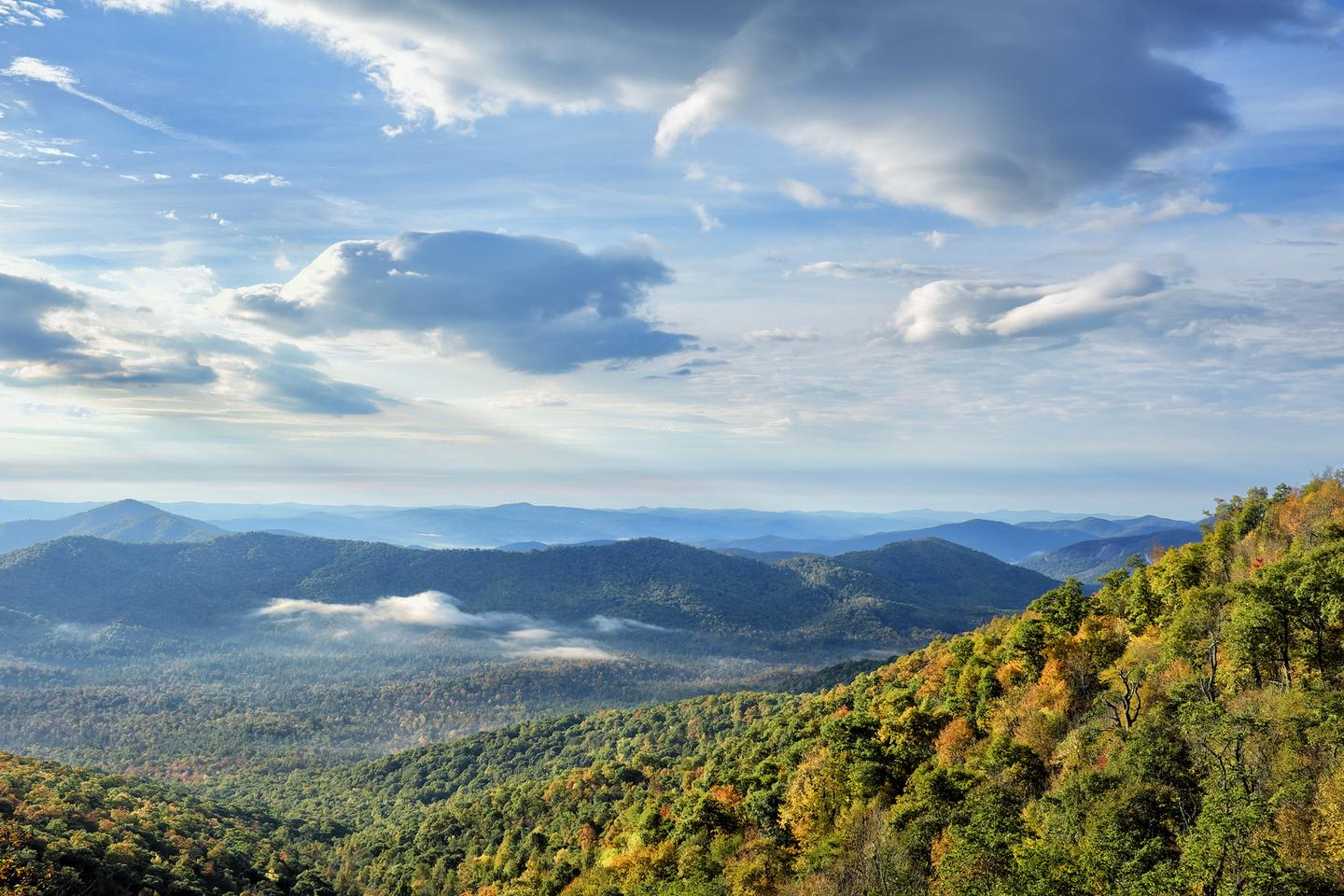 Mountain vistaBeautiful mountain in North Carolina draw visitors from around the world to the Blue Ridge Parkway