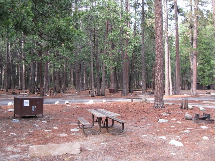 CampsiteCampsite 115