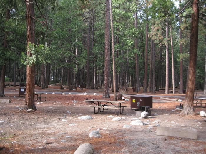 CampsiteCampsite 116
