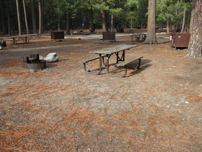 CampsiteCampsite 118