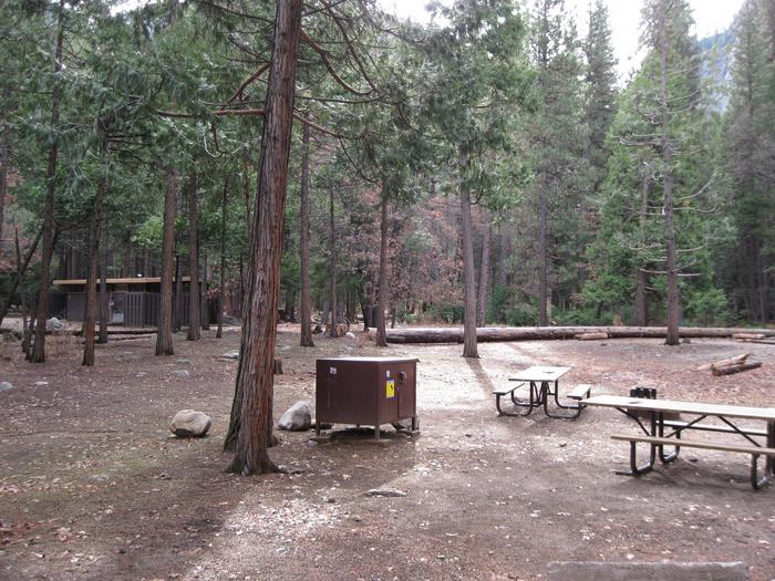 CampsiteCampsite 119