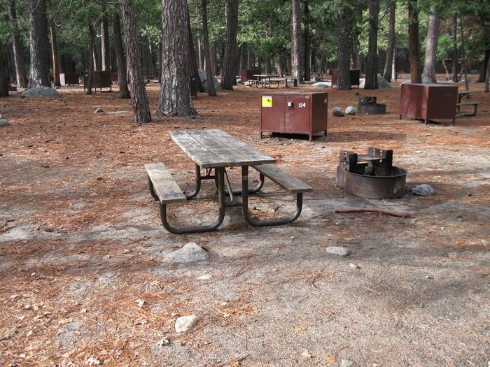 CampsiteCampsite 124
