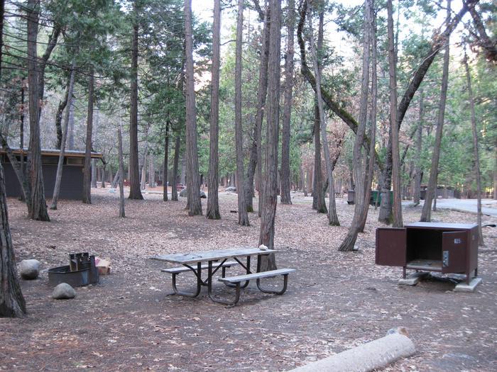 CampsiteCampsite 125