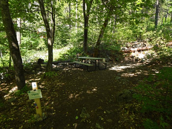 A campsite in a dense deciduous woods, with picnic tablePurple Point Site 4