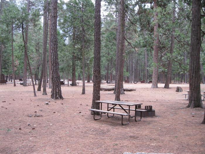 CampsiteCampsite 87