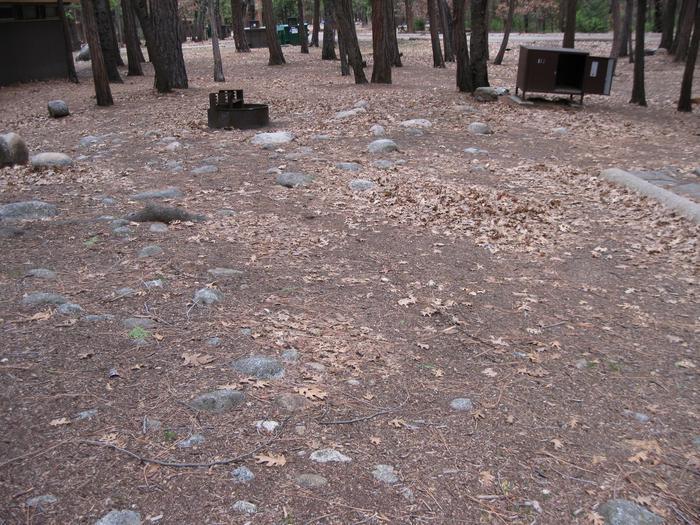 CampsiteCampsite 127