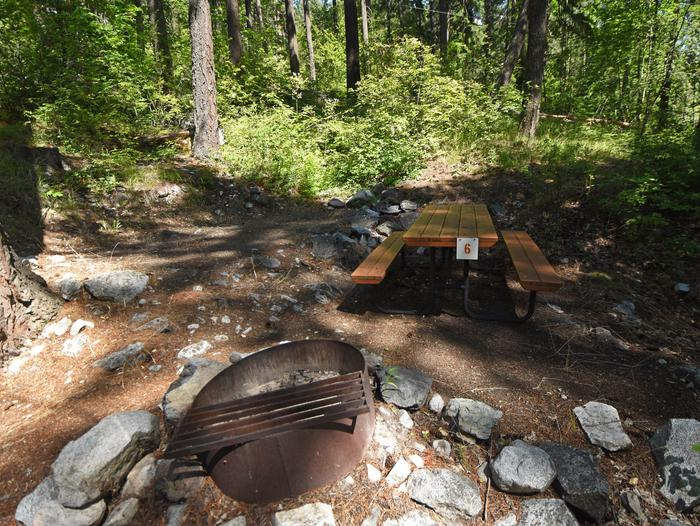 Campsite surrounded by woods with picnic table and fire gratePurple Point Site 6