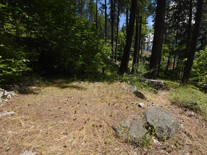A campsite surrounded by open forest with a picnic table in the backgroundLakeview Site 4