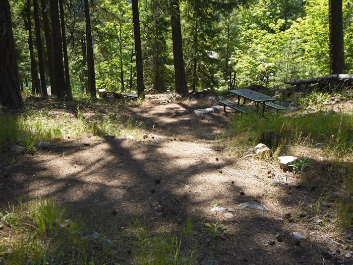 A picnic table in a campsite with two tent pads surrounded by open forestLakeview Site 8