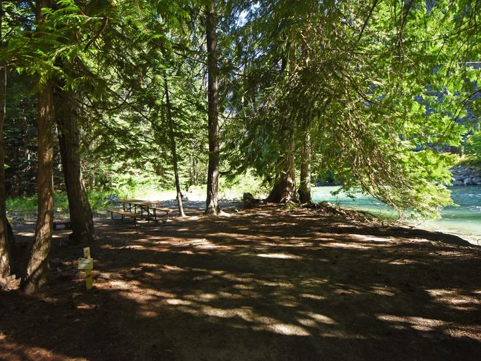 A picnic table in a campsite surrounded by open forest next to a riverHarlequin Site 2