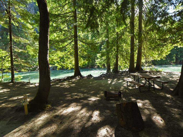 A picnic table in a campsite surrounded by open forest with a river behindHarlequin Site 4