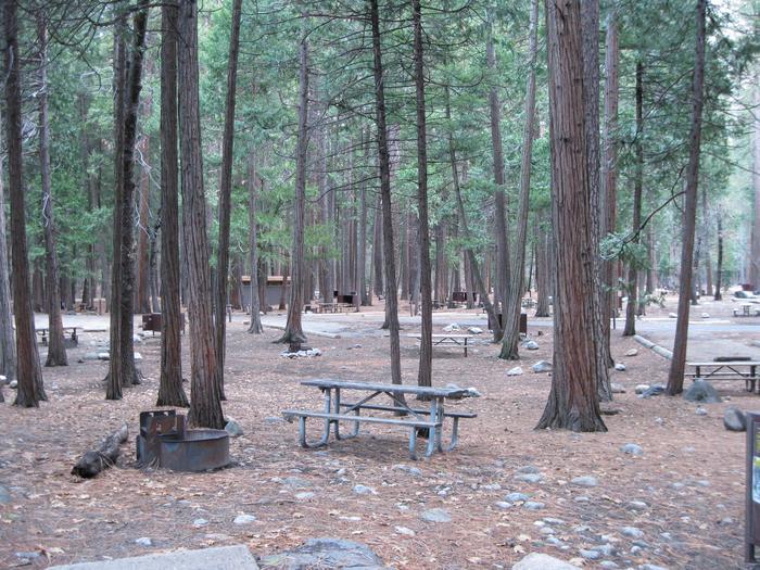 CampsiteCampsite 138