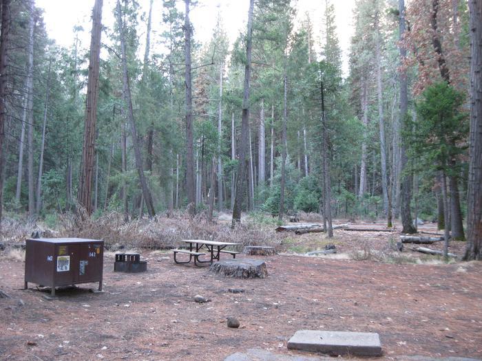 CampsiteCampsite 142