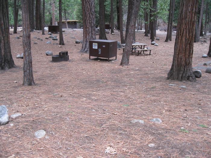 CampsiteCampsite 145