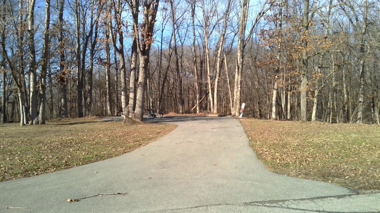 Site 84 Driveway