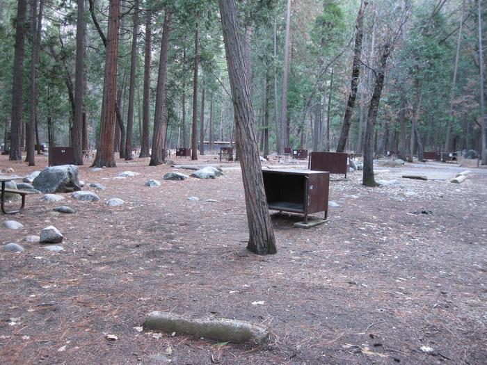 CampsiteCampsite 147