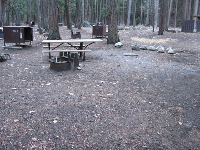CampsiteCampsite 146