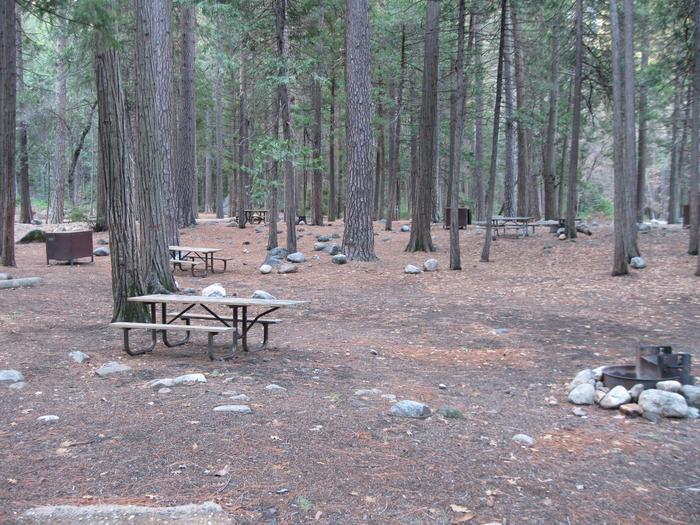 CampsiteCampsite 148