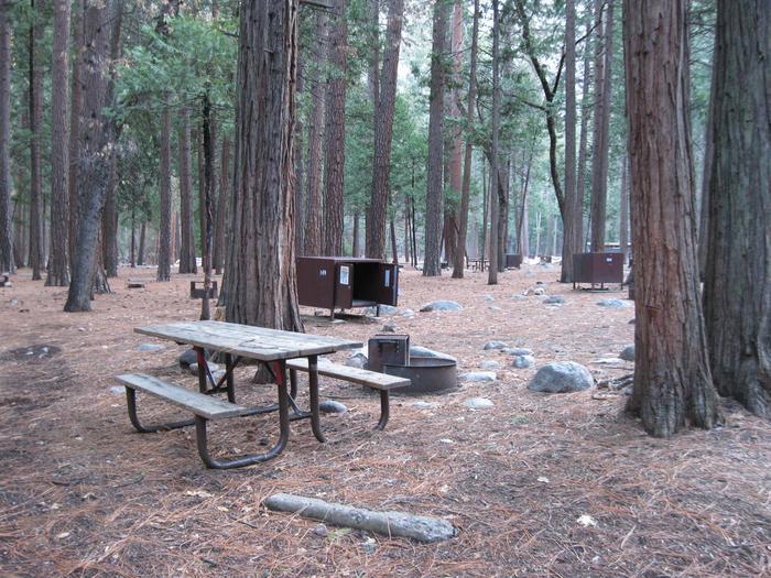 CampsiteCampsite 149