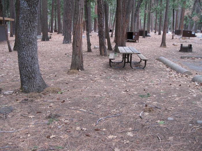 CampsiteCampsite 151