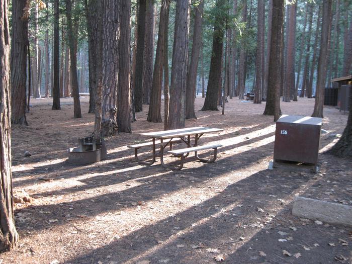 CampsiteCampsite 155