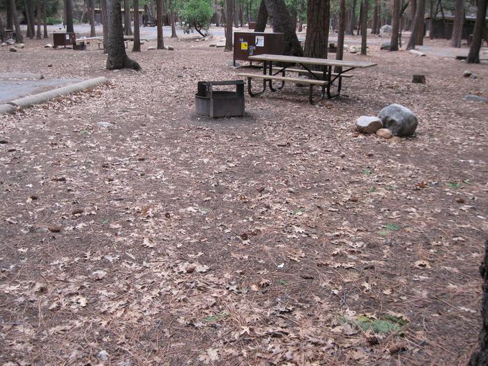 CampsiteCampsite 156