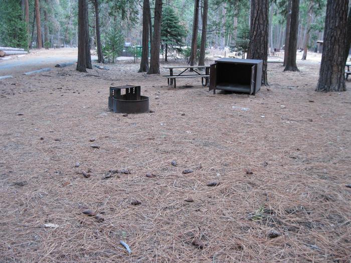 CampsiteCampsite 157