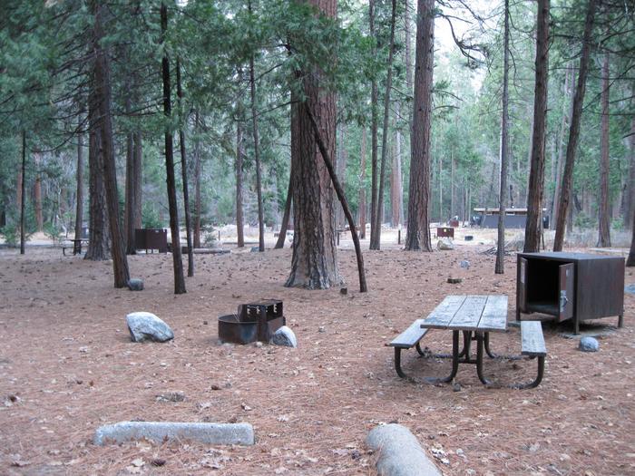 CampsiteCampsite 161