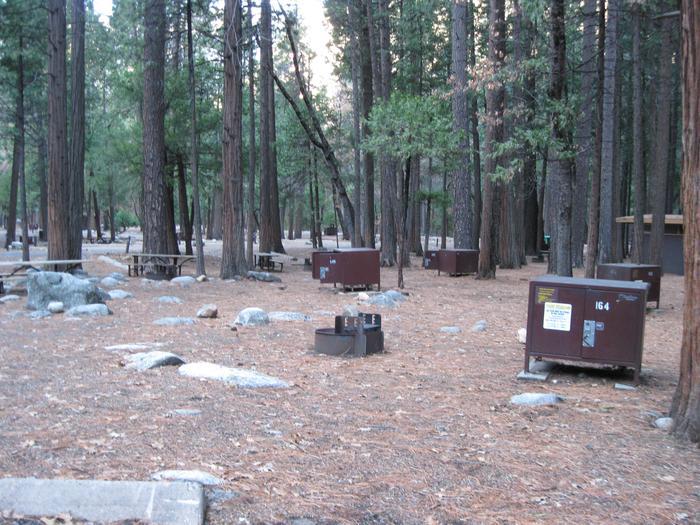 CampsiteCampsite 164