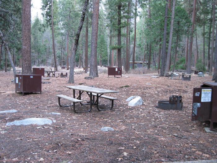 CampsiteCampsite 167