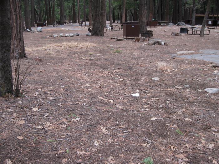 CampsiteCampsite 168
