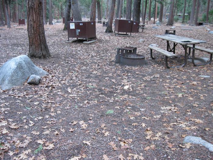 CampsiteCampsite 169
