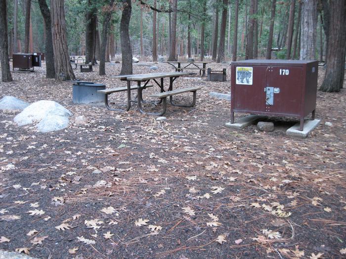 CampsiteCampsite 170